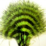 Barred Marabou - Chartreuse/Black
