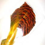 Golden Pheasant - Natural